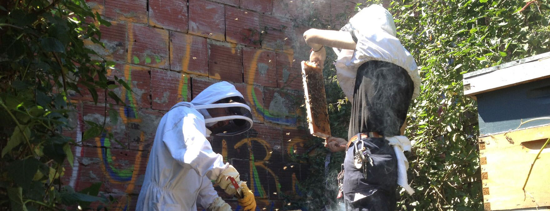 HivesforHumanity_Urban_Beekeeping_THINKblog_resize